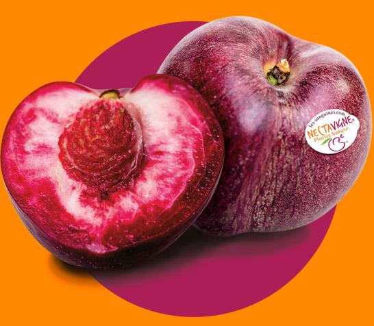 """Résultat de recherche d'images pour """"fruit nectavigne"""""""